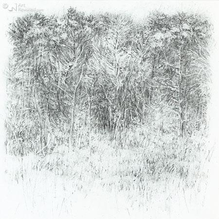 Stille bosrand