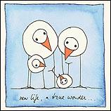 New life, a true wonder...