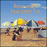 Relax and have some fun