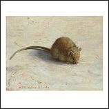 Mouse I