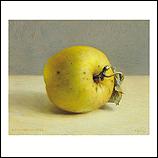 'Notaris' apple
