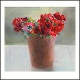 Red anemones