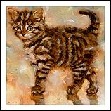 Striped kitten