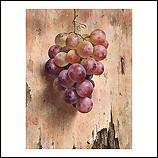 Druiven