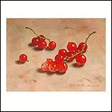 Redcurrants