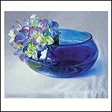 Hortensia in blauwe kom