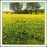 Over Elyzeese velden, ode aan de …