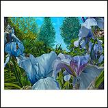Look through with purple Iris