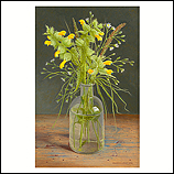Still life with Greater Yellow-ra…