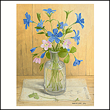 Still life with Periwinkle and Wo…