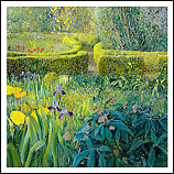 Tuin Ezinge met Irissen
