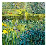 Garden with Irises