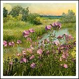 Landscape Flowers #02