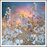 Landscape Flowers #11