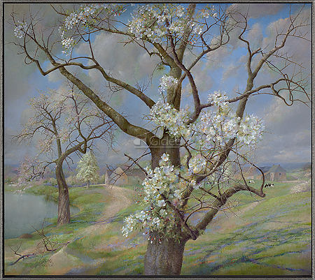 Bloeiende kersenboom