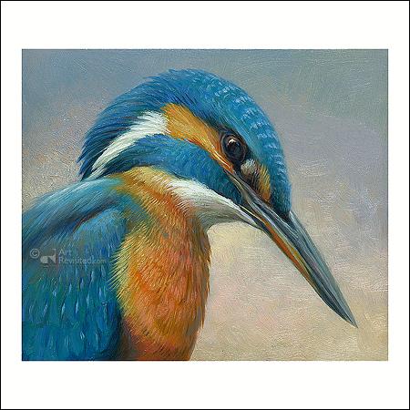 Portret van een ijsvogel