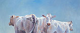 Twee koeien en een stier