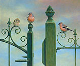 Finches perched on a fence