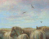 Horses and barn swallows