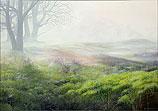 Mist over heathland