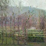 Rozenhof in de winter