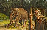 Noach met olifant