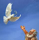 De duif komt terug bij Noach