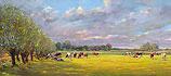 Koeien bij het wilgenlaantje