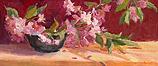 Prunus blossom