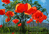 Poppies, tree or mountain