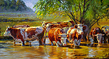 Red-and-white cattle under the willow