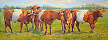 Lakenvelder cattle