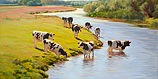 Young cattle by the river