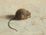 Mouse III