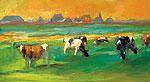 Cows near Skuzum