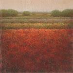 Rood veld