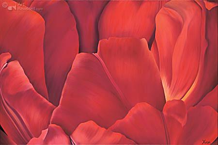 Tulpen bladeren