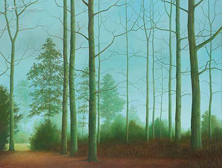 Bomen zonder blad
