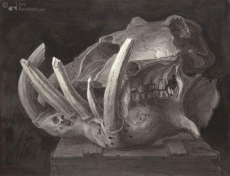 Nijlpaardschedel I