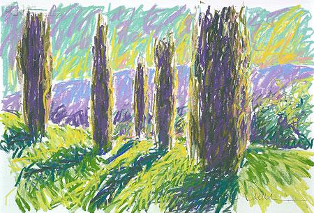 Cathy's Cypressen (Toscane)