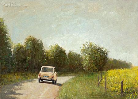 Citroen Ami 8, 1976