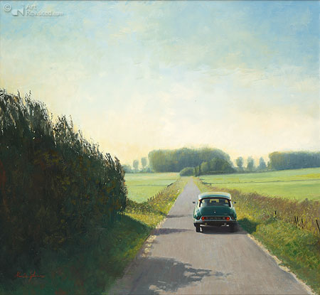Citroën DS in polder