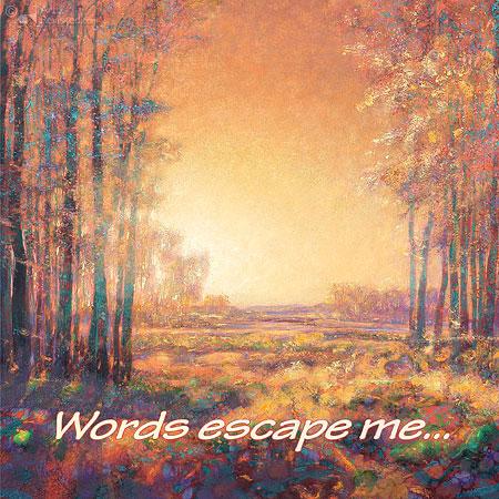 Words escape me...
