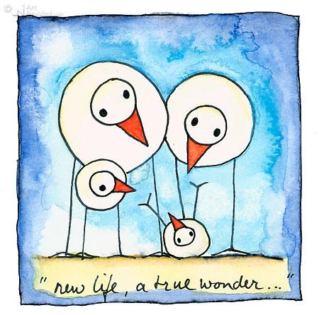 New life, a true wonder... (2)