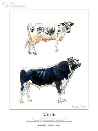 Witrik (melktype)