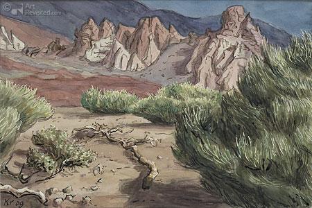 Roques de la Garcia II