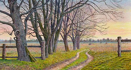 Eenzame weg langs bomen