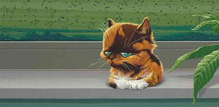 Kat in vensterbank