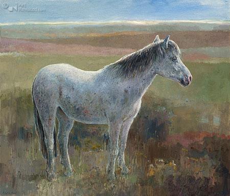 Frans paardje