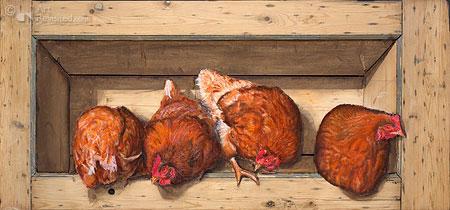 Vier rode kippen